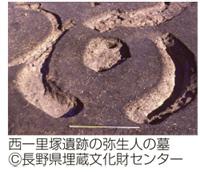 西一里塚遺跡の弥生人の墓